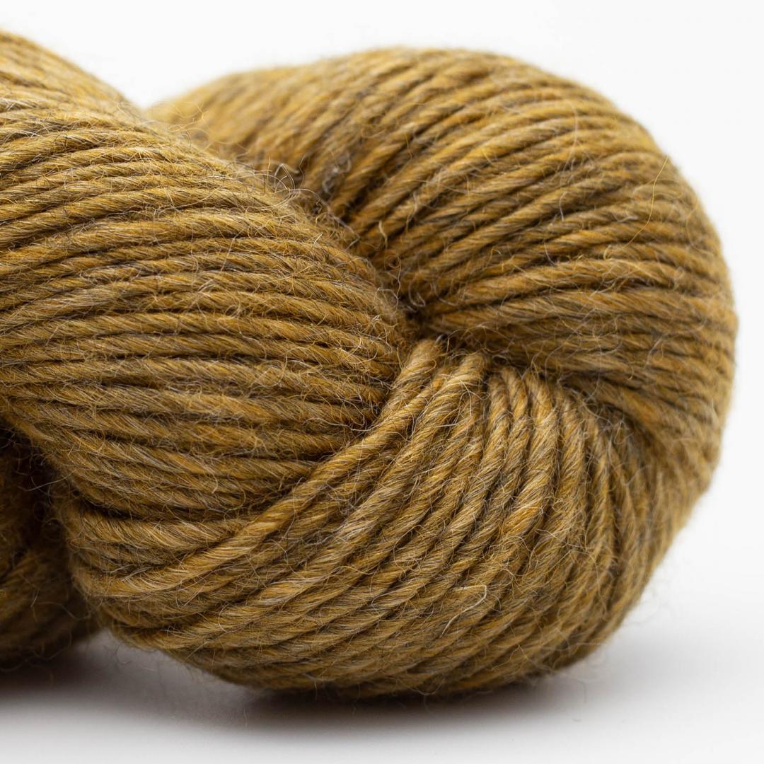 Erika Knight Wild Wool pootle